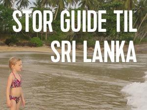 stor rejse guide til sri lanka