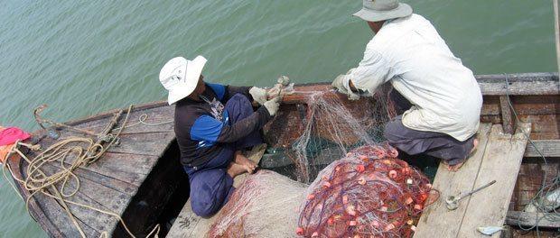 de lokale fiskere