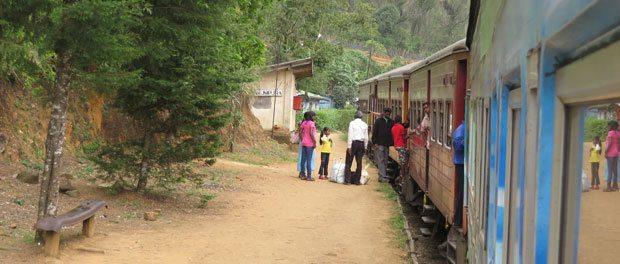 togtur er også must på sri lanka