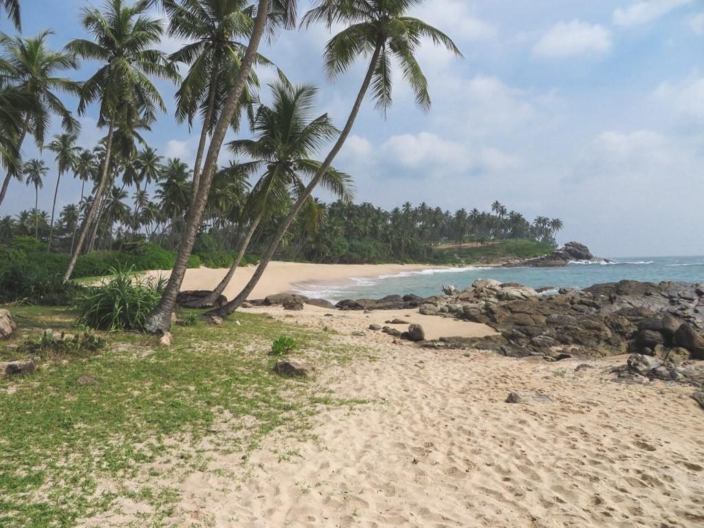 skøn strand og badeferie