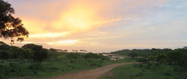 flot morgensol over yala nationalpark