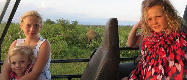 børnene ser på elefanter i safaribil