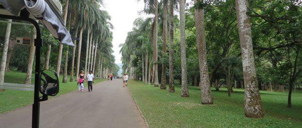 flot have og dejlig afslappende atmosfære til hygge med børnene