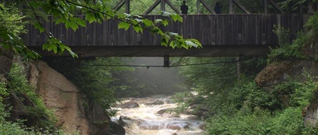 mange smukke natur oplevelser her ved White Mountain Naitional Forest