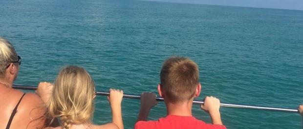 delfinsafari med børnene i usa