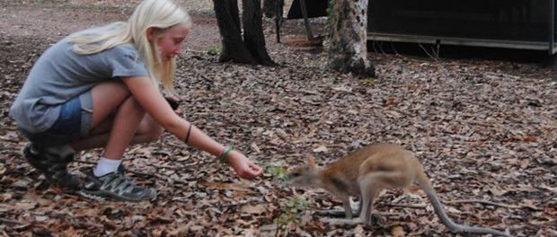 børnene snakker med kænguruerne