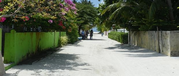lokalivet på maldiverne