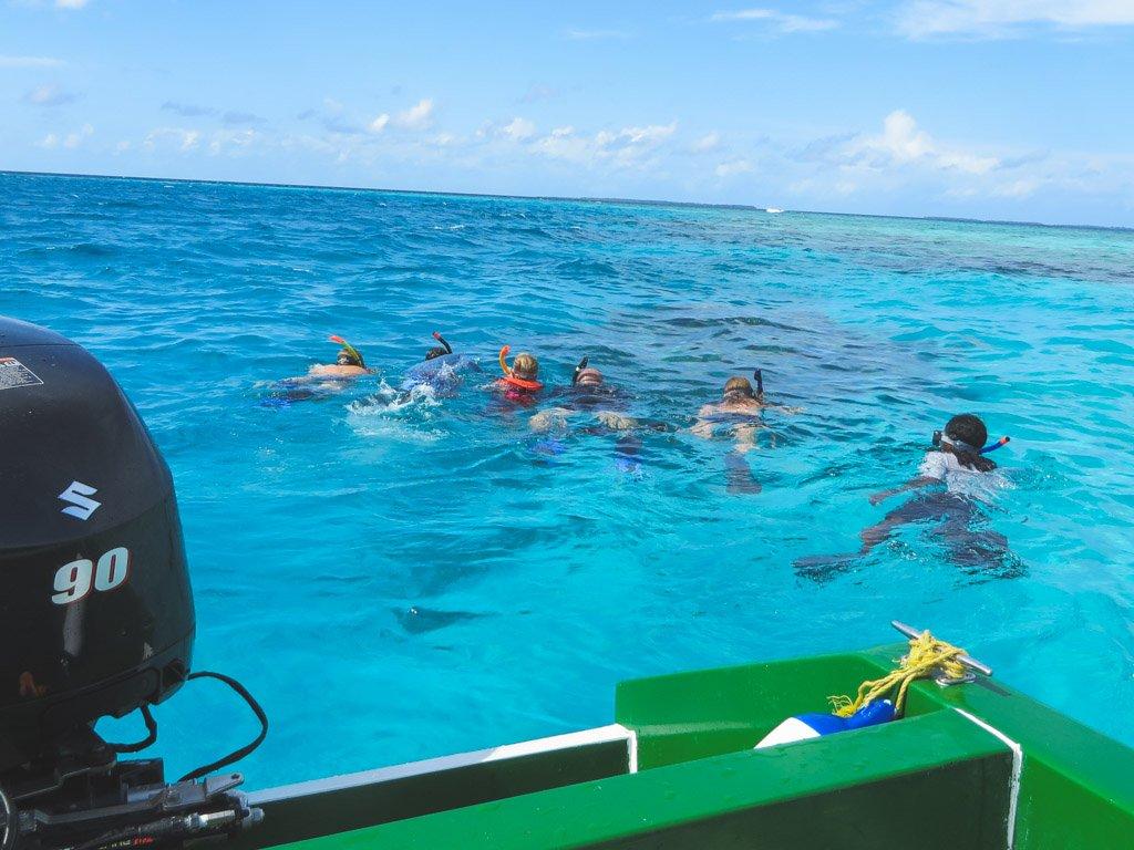 snorkle tur paa den bedste oe paa maldiverne