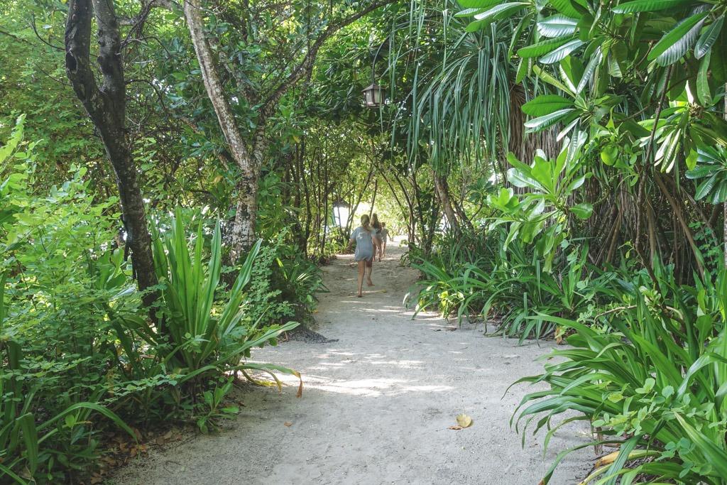 skøn lille jungle tur på vej ud til vores vandvillaer