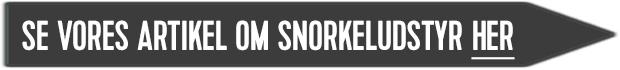 se vores guide til snorkeludstyr her