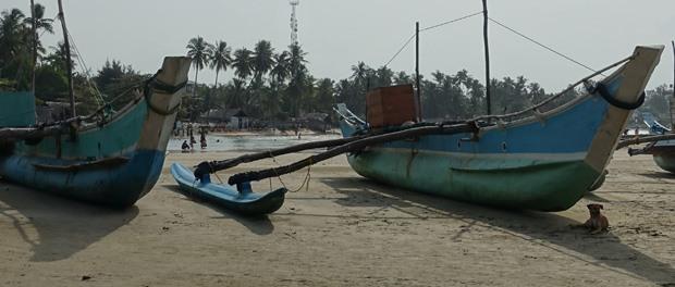 smukt og autentisk med fiskerbådene der ligger på stranden ved arugam bay