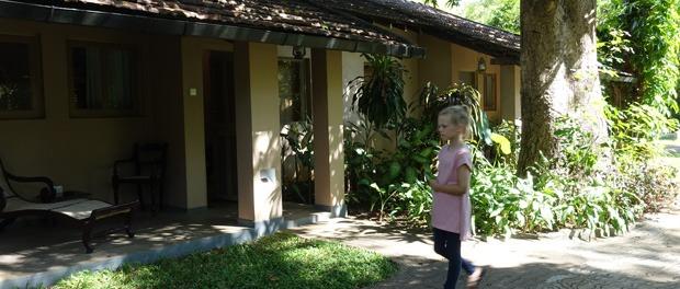 hyggelig stemning ved sigirya village hotel