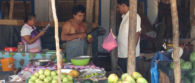 frisk mangoer fra gadeboden