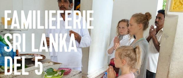 sidste del af vores rejseberetning fra sri lanka inden turen går til maldiverne