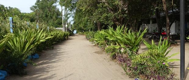 turen ned til stranden fra hotellet