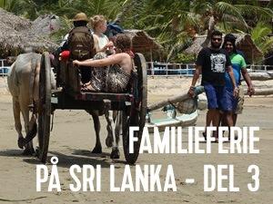 når turen går til sri lanka, så tager forbi Arugam Bay
