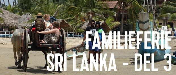 når turen går til Sri lanka - kan man sagtens smutte forbi Arugam Bay - men hop Passikudah over...