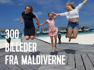 billeder fra maldiverne
