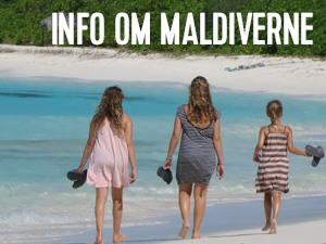 info om maldiverne