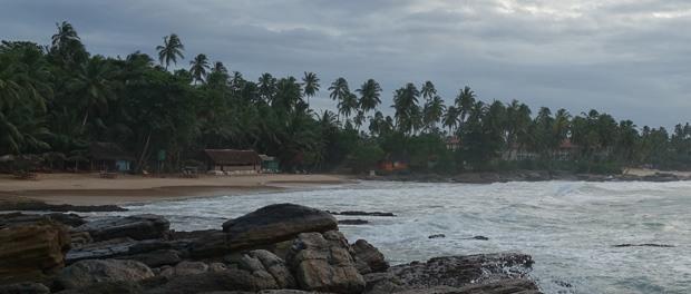 skøn strand ved goyambokka beach