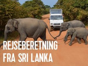 en rejseberetning fra Sri Lanka