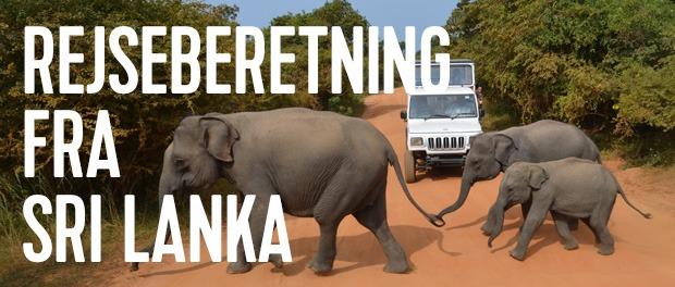 sri-lanka-rejser