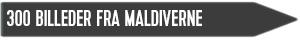 billeder maldiverne