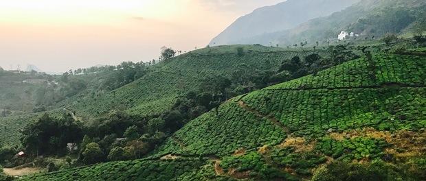 skøn udsigt ved munnar i sydindien