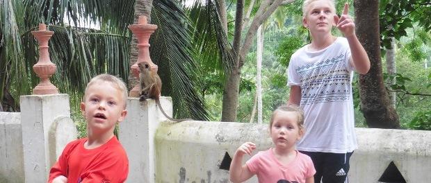 Besøg på Mulkirigala-templet, buddistisk tempel i Tangalle, hvor der bl.a. var aber