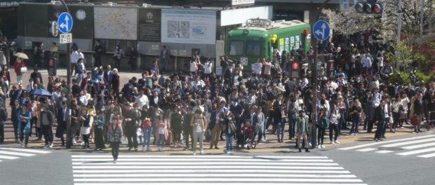 rejser-japan
