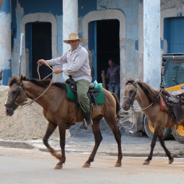 på vej til cayo levisa mødte vi mange heste