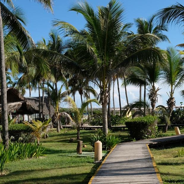 palmehaven på cayo coco