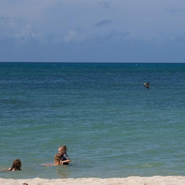 stranden ved trinidad
