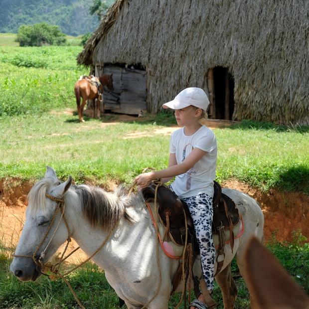 første stop på hesteturen