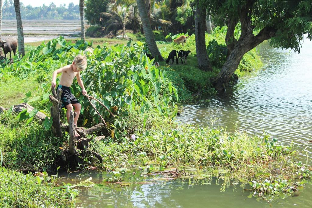 masser af muligheder for børnene at lege når vi sejler ind til breden ved backwaters i indien