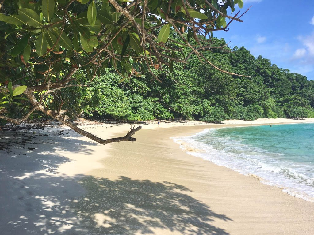 strand på havelock andamans