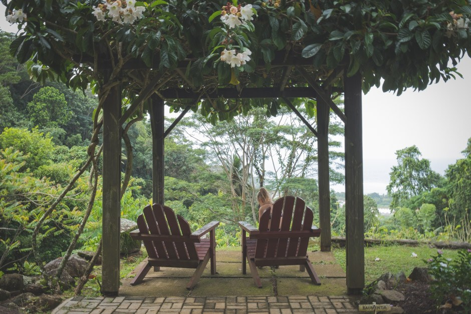 jardin du roi - seværdigheder på mahe seychellerne