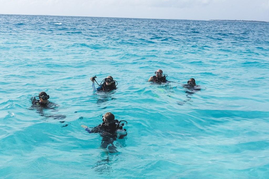 så dykker vi alle