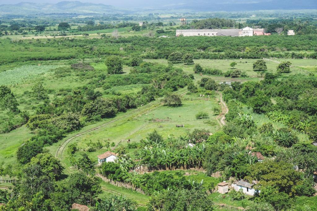 frodige marker og sukkerrørs plantager tæt ved trinidad cuba