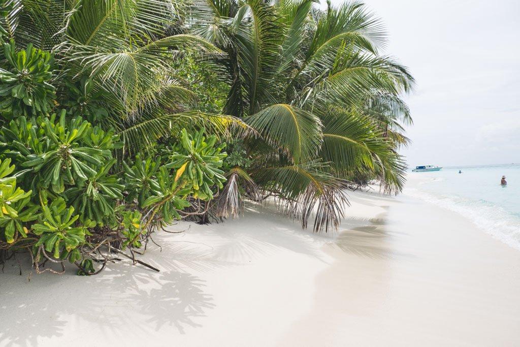 den lille strand maldiverne