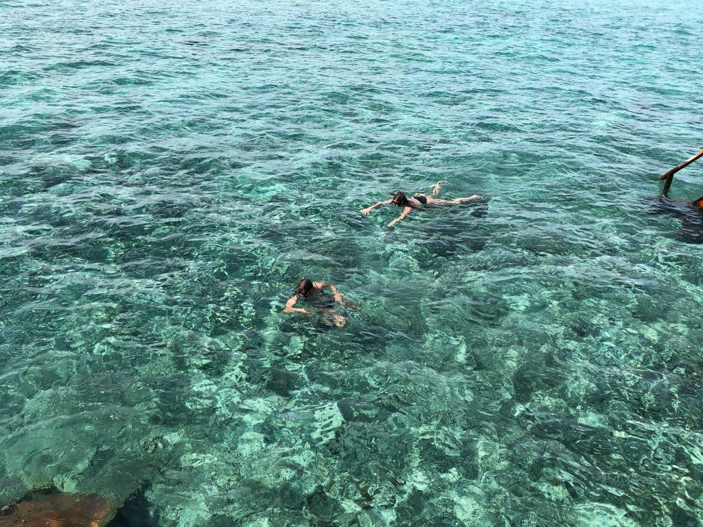 Snorkling ved Reethi Faru